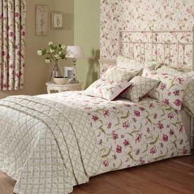 Tulipa Bedding