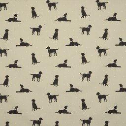 Rover Curtain Fabric